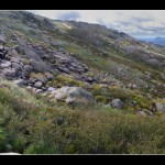 Snowy Mountains - Thredbo