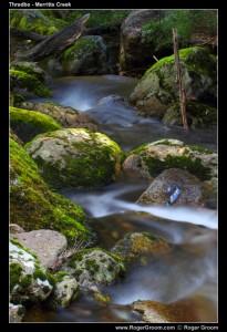 Mossy Rrocks at Merritts Creek, Thredbo