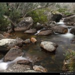 Merritts Creek, Thredbo