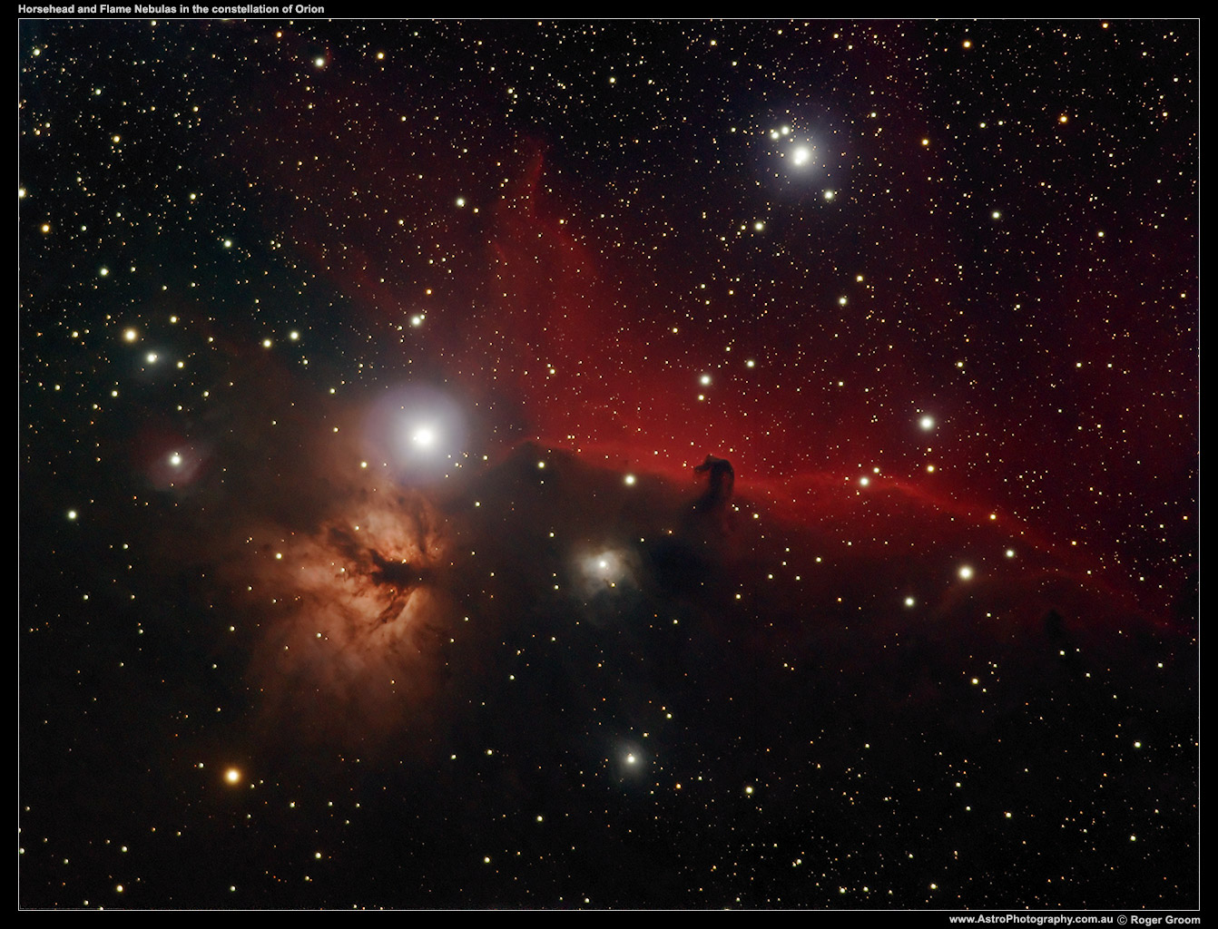 Horsehead and Flame Nebulas in the constellation of Orion