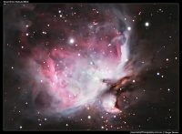 A photograph of the Great Orion Nebula (M42)