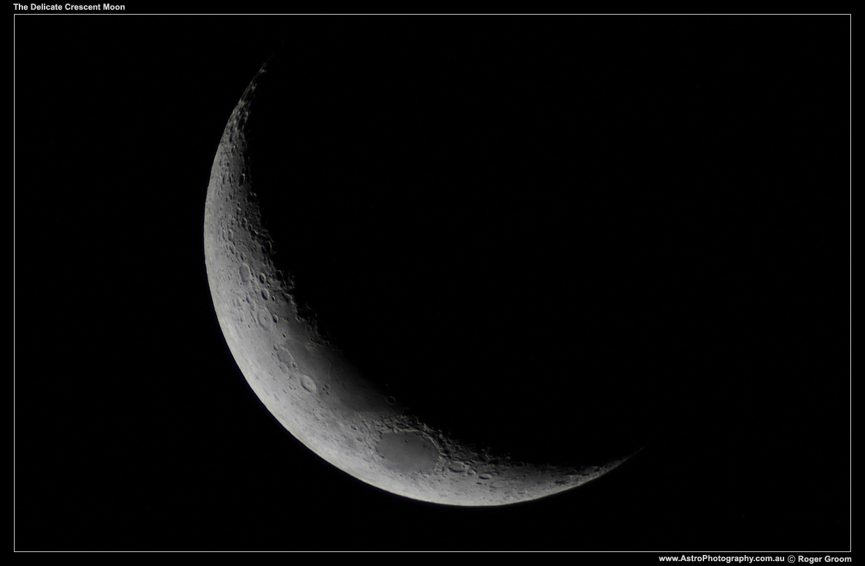 The Delicate Crescent Moon