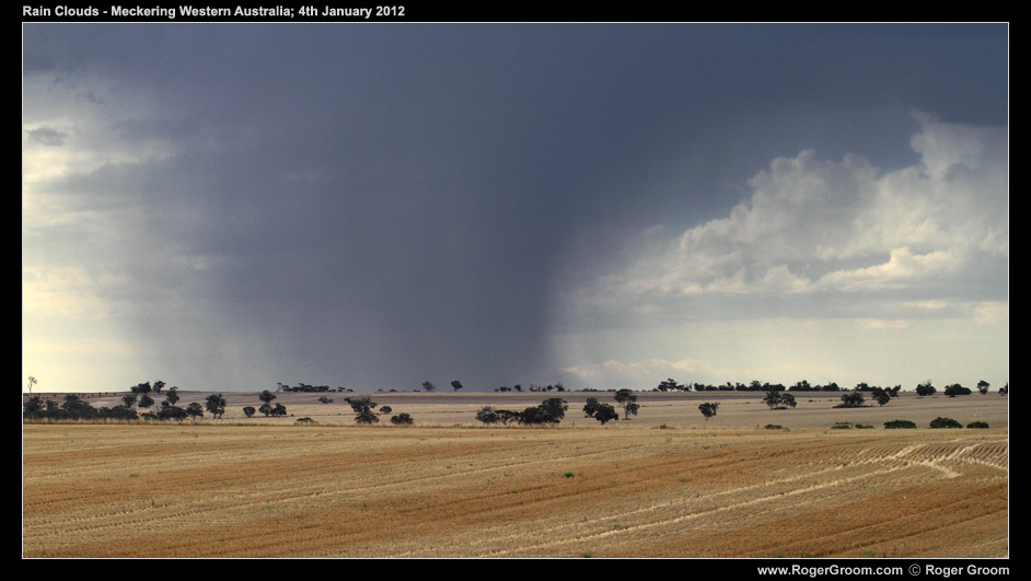 Wheatbelt Rain Shower