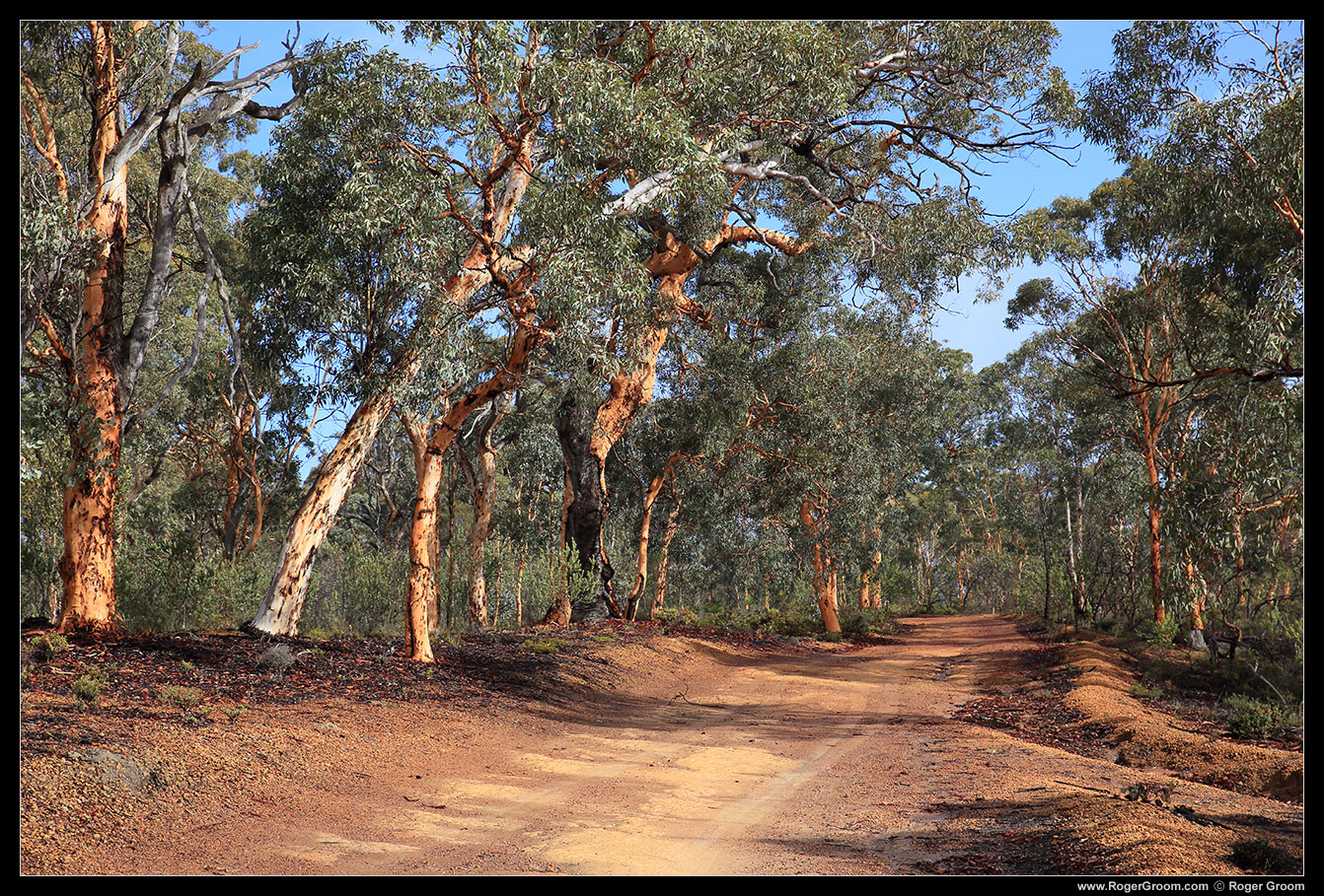 The road winding in to Mt Observation, between Perth and York in the Western Australian Wheatbelt region.