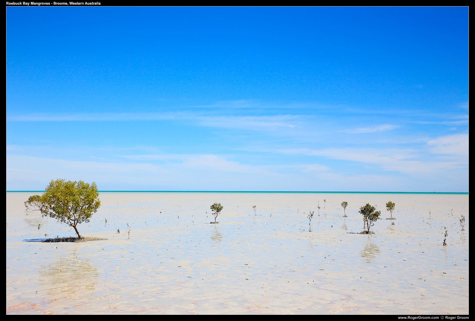 Roebuck Bay Mangroves under the clear blue sky of Broome, Western Australia