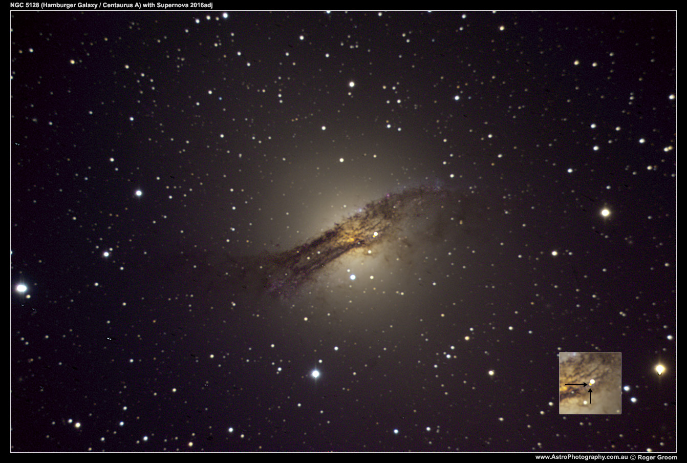 Supernova in NGC 5128 (Hamberger / Centaurus A galaxy), discovered by Australians Peter Marples and Greg Bock of the BOSS team.